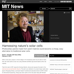 Harnessing nature's solar cells