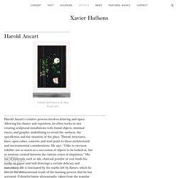 Harold Ancart - Artist Biography & Works - Xavier Hufkens