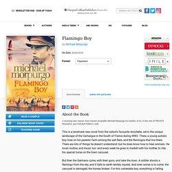 Flamingo Boy :HarperCollins Australia