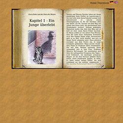 Harry Potter Resumen de Capítulos