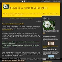 35 - Le réseau Hartmann et les abeilles