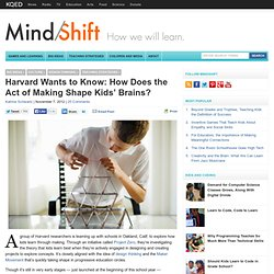Harvard Wants to Know: How Does the Act of Making Shape Kids' Brains?
