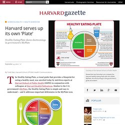 serves up its own 'Plate' | Harvard Gazette