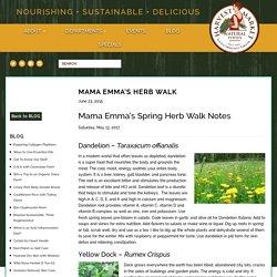 Mama Emma's Herb Walk - Harvest Market Natural Foods