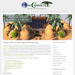 One Community Tropical Atrium Planting and Harvesting Open Source Details for Duplication