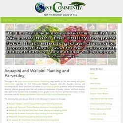 Aquapini and Walipini Planting and Harvesting: Diversity