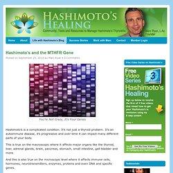 Hashimoto's and the MTHFR Gene - Hashimotos Healing