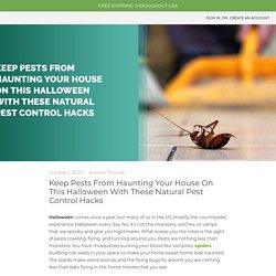 Keep Pests From Haunting Your House On This Halloween - MDX Concepts