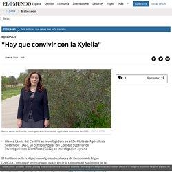 """ELMUNDO_ES 20/03/18 """"Hay que convivir con la Xylella"""" Blanca Landa del Castillo es investigadora en el Instituto de Agricultura Sostenible (IAS), un centro singular del Consejo Superior de Investigaciones Científicas (CSIC) en investigación agraria"""