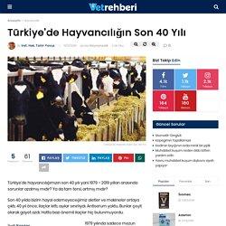 Türkiye'de Hayvancılığın Son 40 Yılı - Hayvancılık - VetRehberi