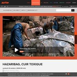 Hazaribag, cuir toxique