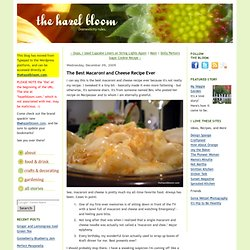 The Hazel Bloom: The Best Macaroni and Cheese Recipe Ever