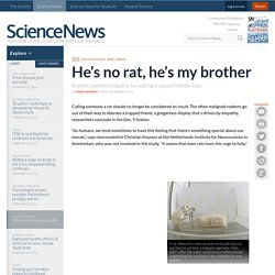 He's No Rat, He's My Brother