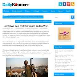 How Cows Can End the South Sudan War - Daily Bouncer, Latest Headlines, Todays News Headlines, Current Breaking News, Latest News TodayDaily Bouncer, Latest Headlines, Todays News Headlines, Current Breaking News, Latest News Today