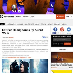 Cat Ear Headphones By Axent Wear