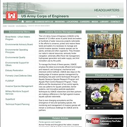 Headquarters U.S. Army Corps of Engineers > Missions > Environmental > Invasive Species Management