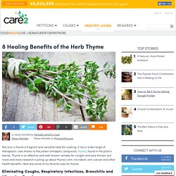 8 Healing Benefits Of The Herb Thyme