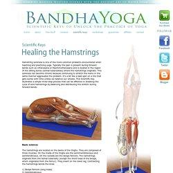 Healing the Hamstrings