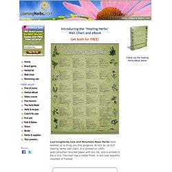 Healing Herbs Wall Chart