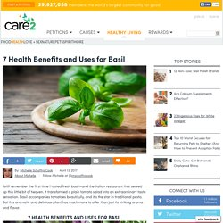 7 Health Benefits And Uses For Basil