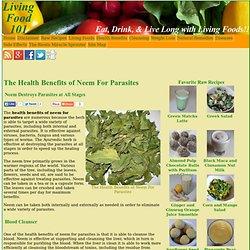 Side Effects Of Ranbaxy Garlic Pearls