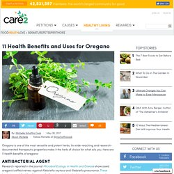 11 Health Benefits And Uses For Oregano