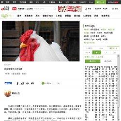 產後進補要食老母雞 -健康好人生 Health-經濟通 ET Net