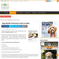 Dog Health Insurance Cost in India - DogExpress.in