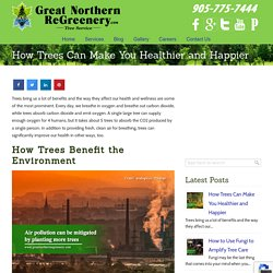 How Trees Can Make You Healthier and Happier
