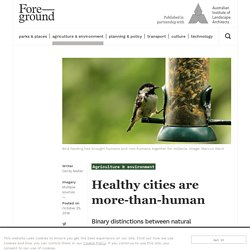 Healthy cities are more-than-human