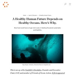 A Healthy Human Future Depends on Healthy Oceans. Here's Why. - EAT