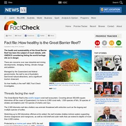 Fact file: How healthy is the Great Barrier Reef? - Fact Check