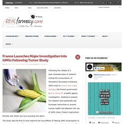 France Launches Major Investigation Into GMOs Following Tumor Study