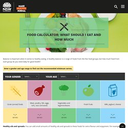 Make Healthy Normal - Food calculator: What should I eat and how much