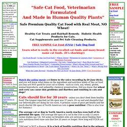 Healthy & Safe Cat Food