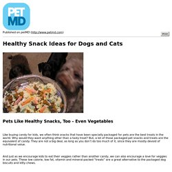 Healthy Snack Ideas for Dogs and Cats