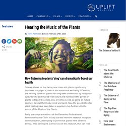 Hearing the Music of the Plants