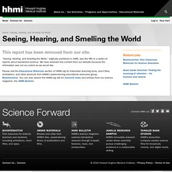 Seeing, Hearing and Smelling the World
