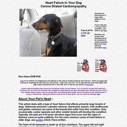 Heart Failure In Your Dog - Cardiomyopathy