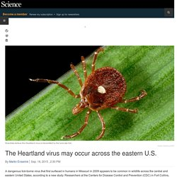 SCIENCEMAG 18/09/15 The Heartland virus may occur across the eastern U.S.