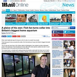 Fish fan Jack Heathcote turns cellar into Britain's biggest home aquarium