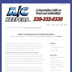 Mold in a Heating and Air Conditioning System