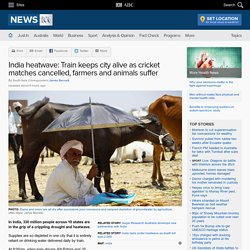 India heatwave: Train keeps city alive as cricket matches cancelled, farmers and animals suffer