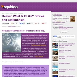 Heaven What Is It Like? Stories and Testimonies.