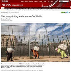 The heavy-lifting 'mule women' of Melilla