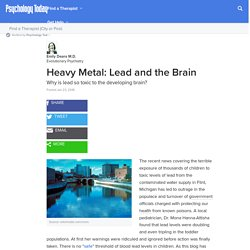 Heavy Metal: Lead and the Brain