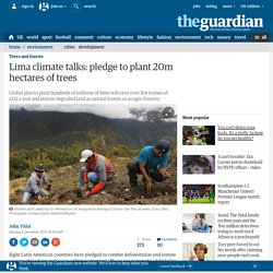 Lima climate talks: pledge to plant 20m hectares of trees