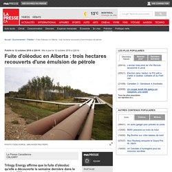 Fuite d'oléoduc en Alberta: troishectares recouverts d'une émulsion de pétrole