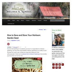 How To Save & Store Your Heirloom Garden Seed