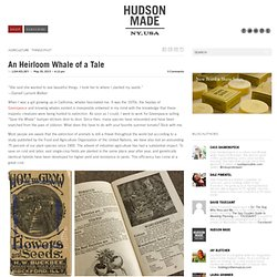 An Heirloom Whale of a Tale | Hudson Made | Blog